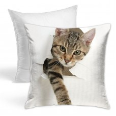 36561 (2) Throw Pillow Covers for Sofa Bedroom , Can be used in children's room 45cm x 45cm