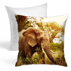Africas Elephant Animals Wild Throw Pillow Covers for Sofa Bedroom , Can be used in children's room 45cm x 45cm