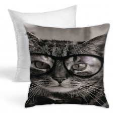 Black Cat With Glasses Throw Pillow Covers for Sofa Bedroom , Can be used in recreational vehicle 45cm x 45cm